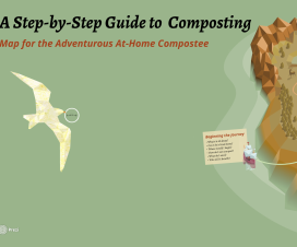 Composting Guide: Step-By-Step
